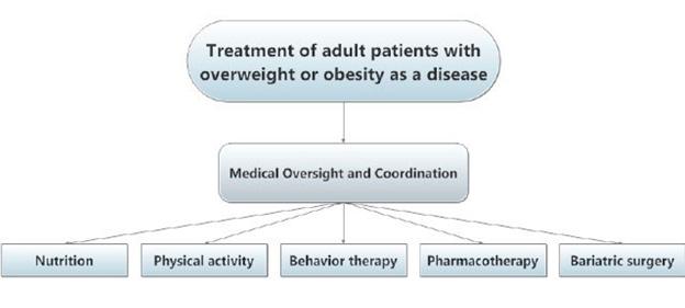 internal medicine obesity treatment
